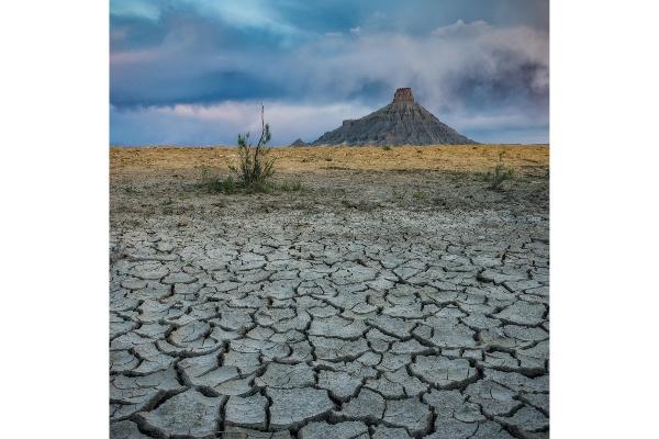 MikeInce_Desertscape.jpg